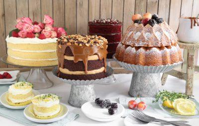 Sprinkle+Bakes+for+Food+Network+Naked+Cakes+Gallery+Opener